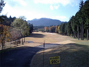 20071117